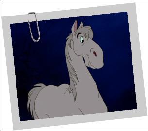 Ce cheval s'appelle comment ?
