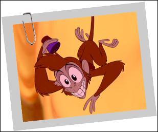 Comment s'appelle ce petit singe ?