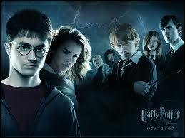 Combien y a-t-il de films  Harry Potter  ?