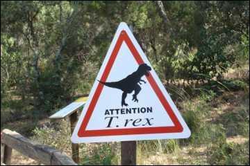 J'allais tomber dans le panneau ! Serait-ce possible de faire  revivre  les dinosaures grâce à l'A. D. N. des poulets ?