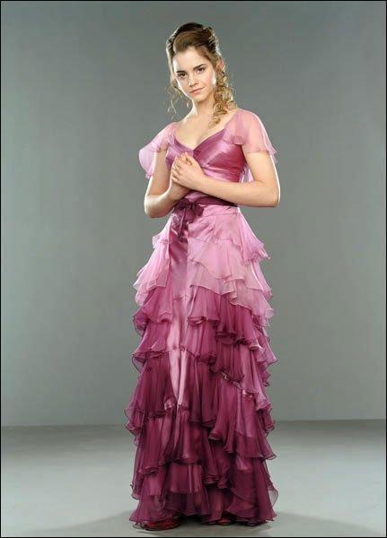 Qui accompagne Hermione au bal de Noël ?