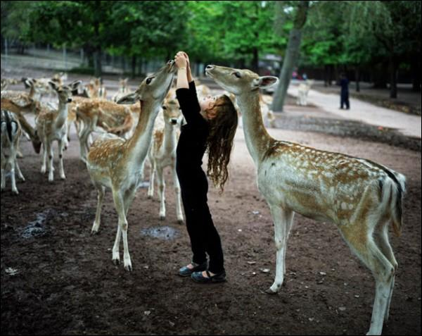 Quels animaux tiennent compagnie à cette petite fille ?