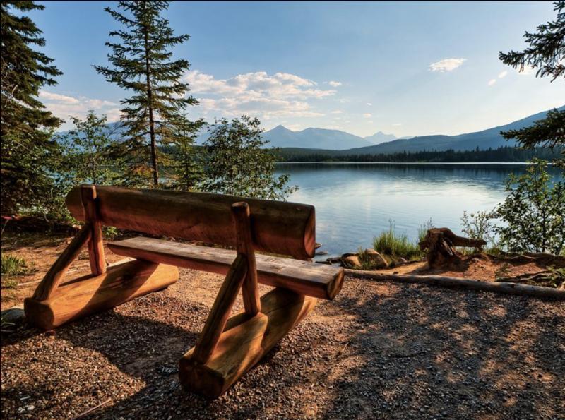 Agrandissez la photo, asseyez-vous sur le banc, et en fonction de cet environnement, dites quel animal vous pouvez observer !