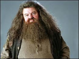 Comment s'appelle ce géant, ami de Harry Potter ?