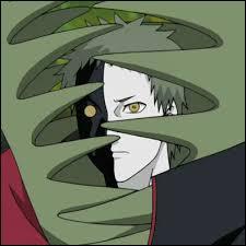 Je suis un homme plante. Je fais partie de l'Akatsuki, mais fais équipe seul. J'ai deux personnalités. Je me nomme :