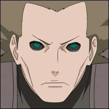 J'étais un shinobi du village d'Iwa. Je faisais partie de l'unité d'explosion avec Deidara. Mon Kekkei Genkai est le Bakuton. Je suis donc :