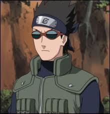 Je suis un Tokubetsu Jônin. Je fais partie du village de la Feuille. J'accompagne Naruto sur l'île Tortue. Je m'appelle :
