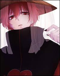Je suis le marionnettiste de l'Akatsuki. Je suis un nukenin du village de Suna. Je suis donc :