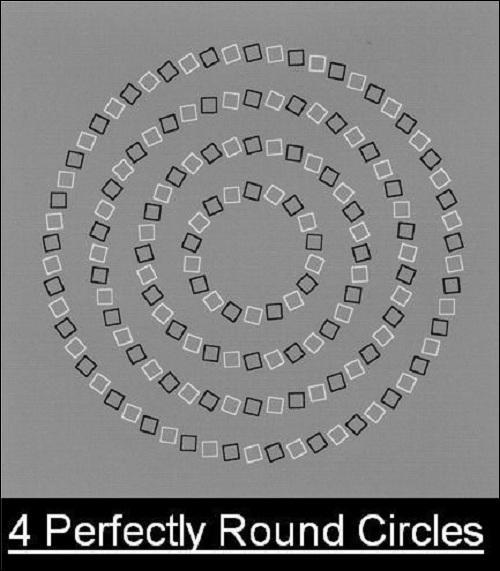Combien de cercles y a-t-il ?