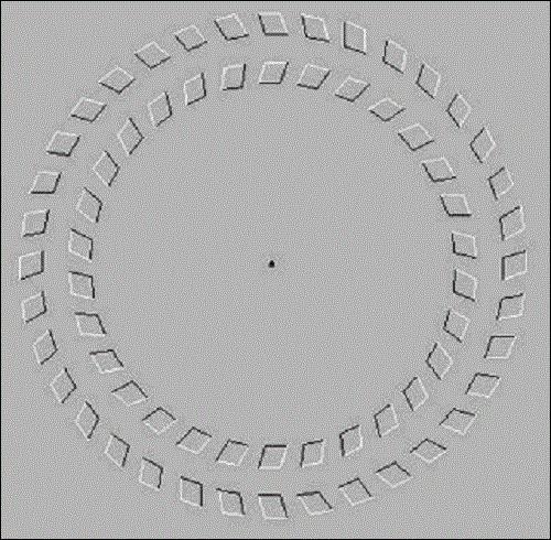 Cliquez sur l'image puis avancez et reculez votre tête en regardant le point du milieu, que font les cercles ?