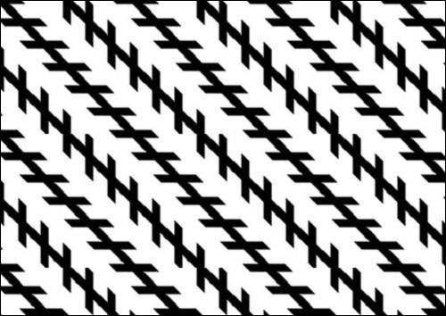 Ces lignes sont parallèles :