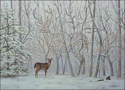 Quel animal est formé par les arbres ?