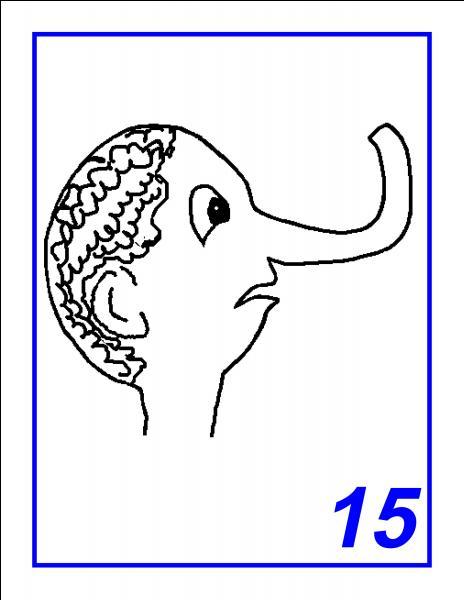 Quel est le nom de l'animal représenté ?