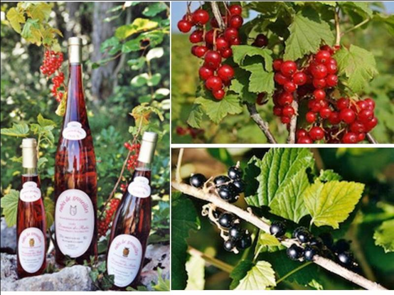 Ces vins doux naturels haut-marnais sont servis en apéritif ou avec les desserts. Ce sont les :