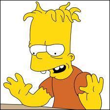 Qui est le frère jumeau de Bart ?