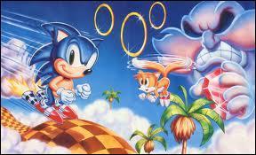 Qui sont les premières personnes que Sonic rencontre ?