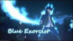 Quel était le premier démon que Rin a vu dans l'anime ?