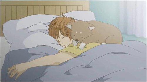 Quel est le prénom du chien de Yano ?