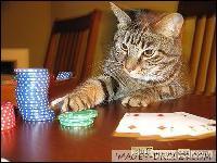 Entre nous, ça joue carte sur table ! C'est une technique qui doit (en théorie) augmenter la probabilité de gagner à un jeu de hasard sans tricher :