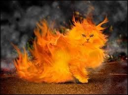 Amoureux, déclarez votre flamme ! Il s'agit d'une bannière ressemblant à une flamme fendue en deux pointes par le bas et suspendue à une lance :