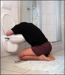 Est-ce que  débagouler  veut dire : vomir ?