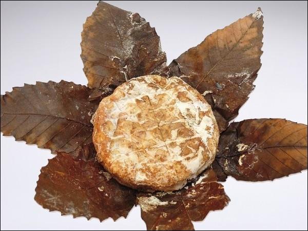D'où provient le  Banon , joli fromage enveloppé dans des feuilles de châtaignier ?