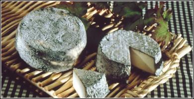 Quel est ce fromage dont le nom pourrait avoir rapport avec un sport équestre ou cycliste ?