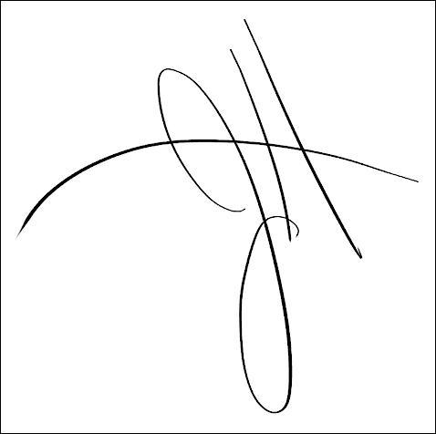 Quelle était la signature du groupe ?