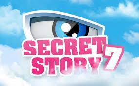 Secret Story : saison 7
