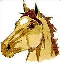 Comment appelle-t-on la marque blanche sur la tête de ce cheval ?