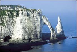 Sur quelle côte se situent les célèbres falaises d'Etretat ?