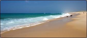 Quelle côte possède la plus longue plage ininterrompue de sable fin en Europe (plus de 100 km) ?