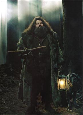 Lorsqu'Harry est en retenue dans la forêt interdite avec Drago, Ron et Hermione, quel élément change par rapport au livre ?