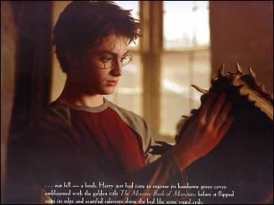 Dans le film, Harry ouvre pour la première fois  Le Monstrueux livre des Monstres  au Chaudron Baveur. Dans le livre, c'est ...