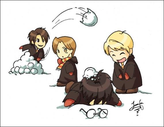 Dans le film, Harry lance de la neige sur Malefoy avec sa cape d'invisibilité pour le faire fuir. Mais dans le livre, il se montre beaucoup moins gentil en lui lançant...