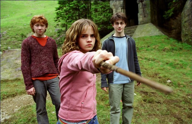 Tout le monde se souvient de la fameuse scène du film où Hermione donne un coup de poing à Drago. Il y a une petite différence dans le livre :