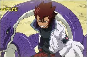 Cobra est un Dragon Slayer de :