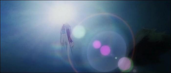 Épisode 29 - Après son combat contre Krieg, Luffy tombe dans la mer enroulé dans un filet. Qui vient le sauver ?