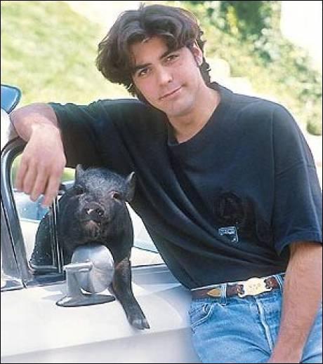 Comment se prénommait le cochon vietnamien de l'acteur George Clooney, décédé en décembre 2006 après dix-neuf ans de complicité ?