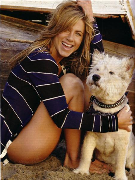 En mai 2011, Jennifer Aniston pleure Norman, son Terrier qui la suivait partout depuis quinze ans. Comment lui a-t-elle rendu hommage ?