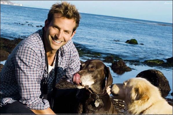 L'acteur Bradley Cooper est tellement fou des ses chiens qu'il leur aurait offert ...