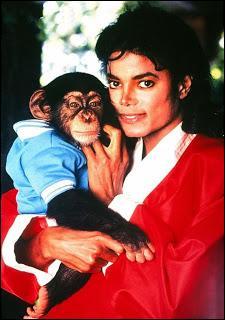 Qu'est-il arrivé à Bubbles, le chimpanzé de Michael Jackson, à la mort du chanteur en 2009 ?