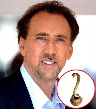 En 2008, les voisins de Nicolas Cage étaient prêts à poursuivre le comédien en justice s'il ne séparait pas de :