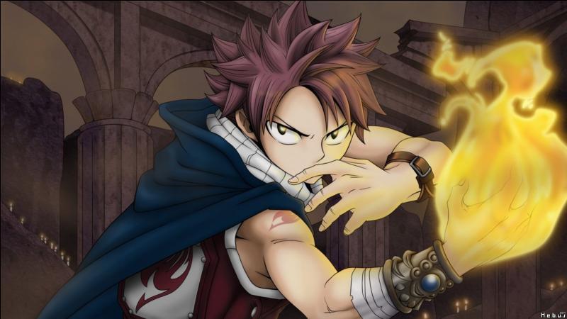Les personnages de Fairy Tail (1)