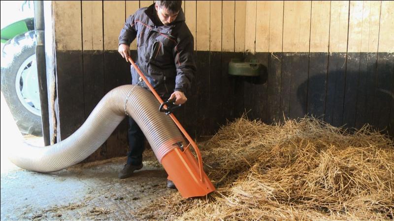 Quizz galop 3 quiz chevaux galop 3 - Personne qui repare les cheminees ...