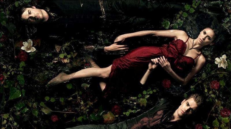 Combien y a-t-il de saisons dans  Vampire Diaries  ?