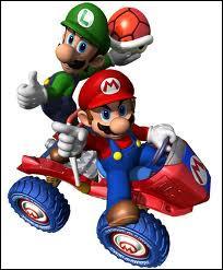 Quel est l'objet spécial de Mario et Luigi ?