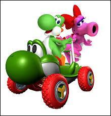 Quel est l'objet spécial de Yoshi et Birdo ?