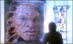 Lesquelles des compagnes du Doctor n'a jamais vu Face De Bo ?