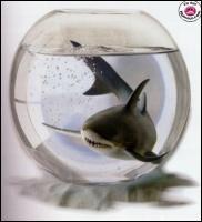 N'ayez pas peur, les requins sont nos amis, surtout miniaturisés ! En réalité, le monstre du loch Ness est (la majorité des scientifiques pensent que cette théorie est la bonne) :